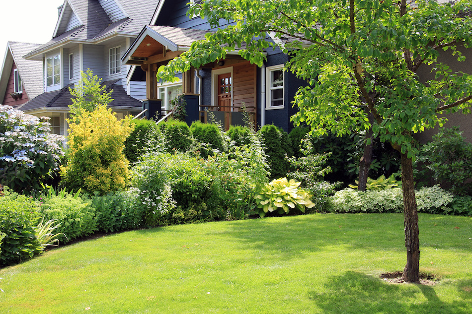 Basic Landscaping Maintenance For Beautiful Lawns