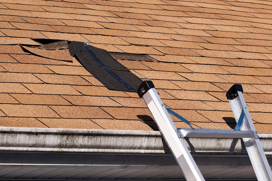 When is a Roof Repai Suitable and When is Replacement the Best Option?